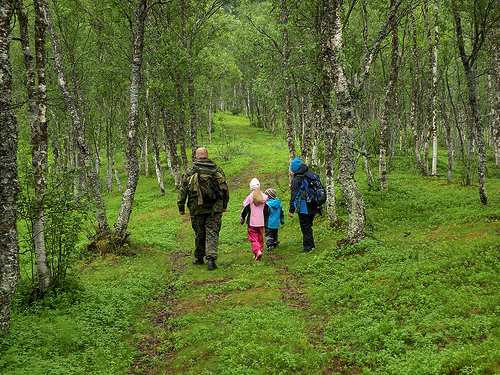 nature walk: finnsnes, northern norway - Imagine Childhood : Magic ...